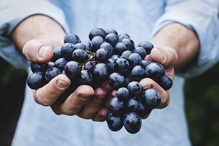 Amazing Benefits Of Grapes For Skin and Hair
